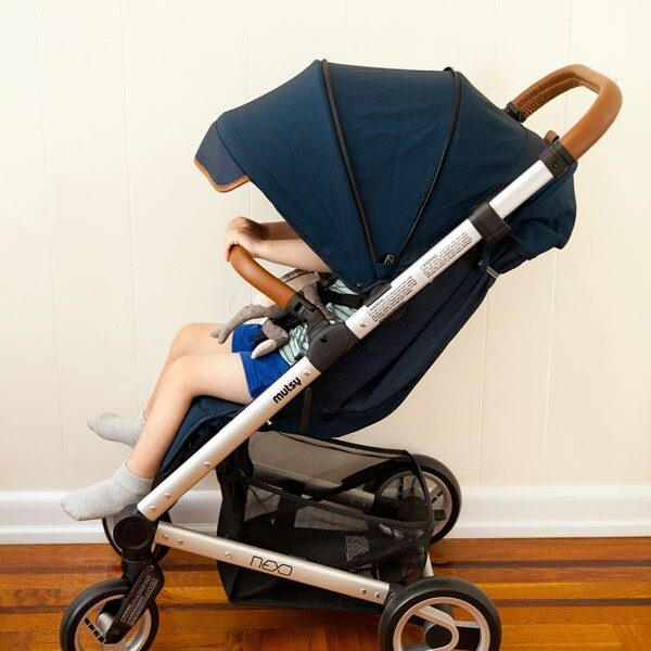 Best Mutsy strollers