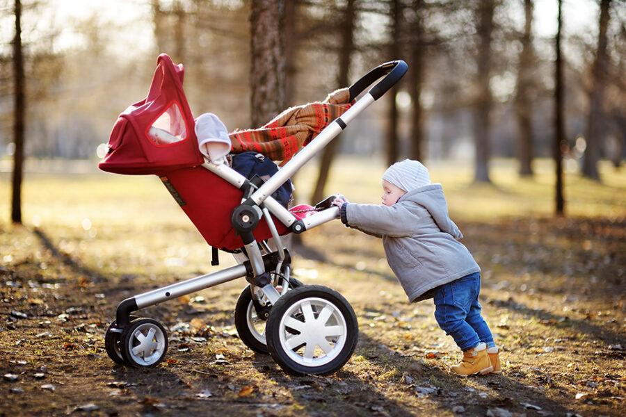 Best asalvo strollers